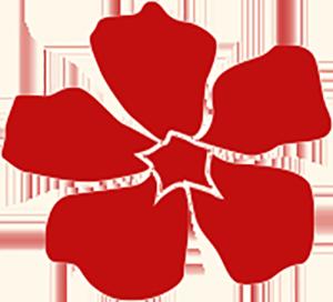 Blüte-gr